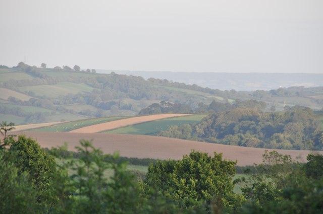 Mid Devon : Fields & Countryside