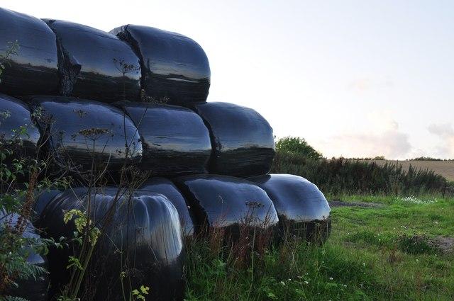 Mid Devon : Hay Bales & Countryside