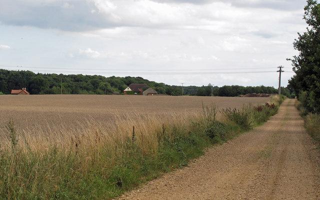 Looking towards Rence Park Farm