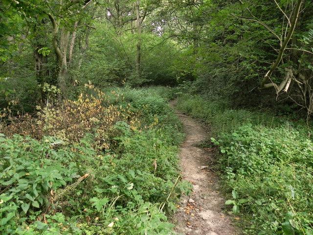 Path to Levisham Village