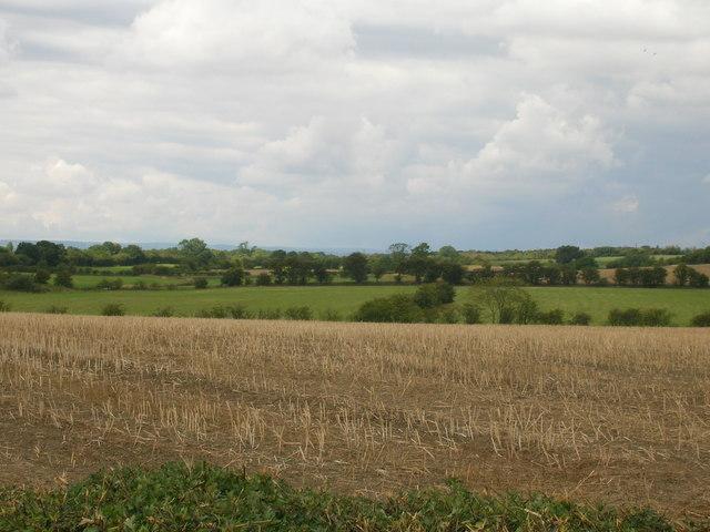 Farmland off Hawk Hill Lane