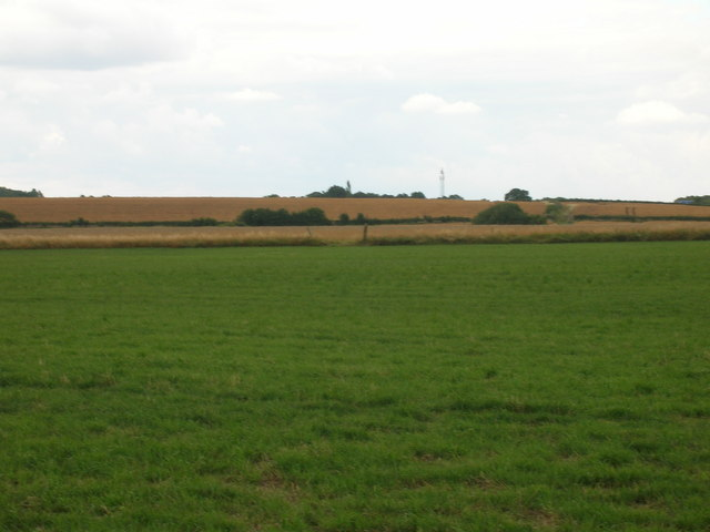 Farmland, Brampton Common