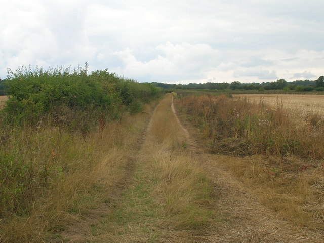 Farm track off New Road