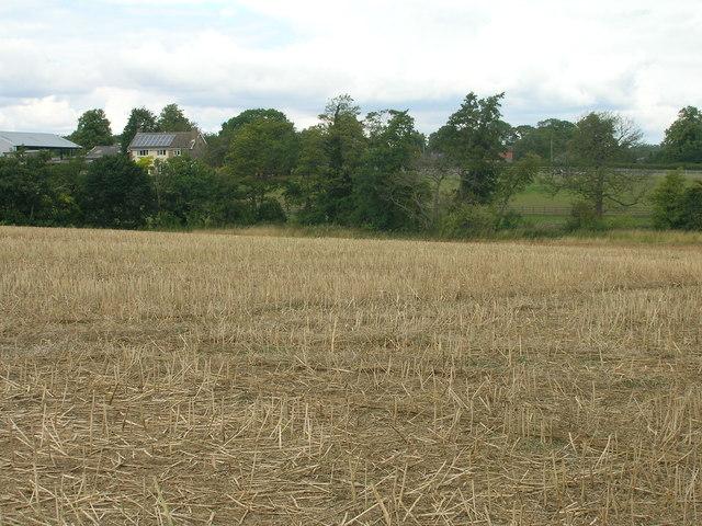 Farmland off New Road