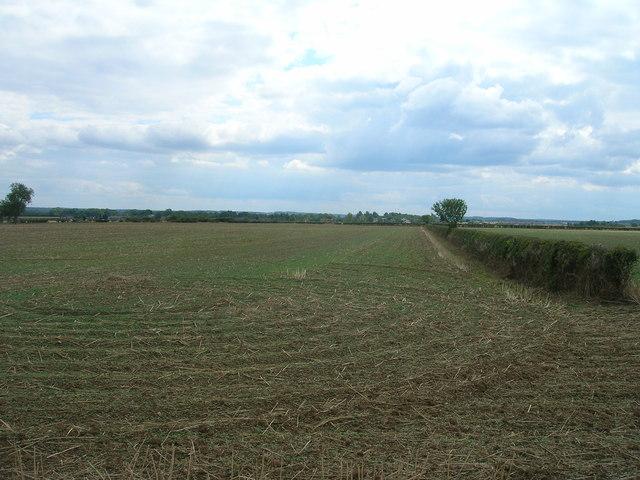 Farmland off Thornbury Hill Lane