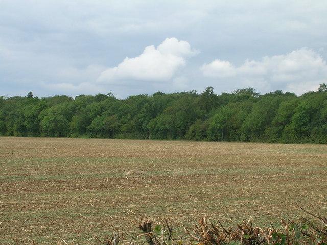Farmland and woodland, Malpas Hill