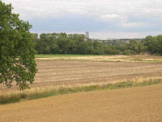 Farmland off Styrrup Lane