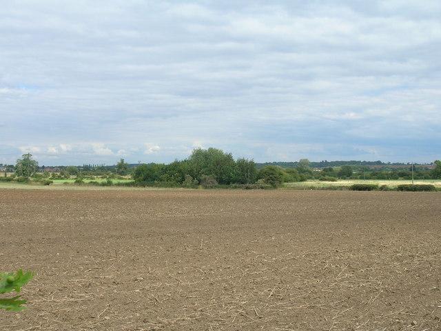 Farmland, Bagley Green