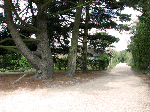 Bridleway to Leiston Carr and Lower Abbey