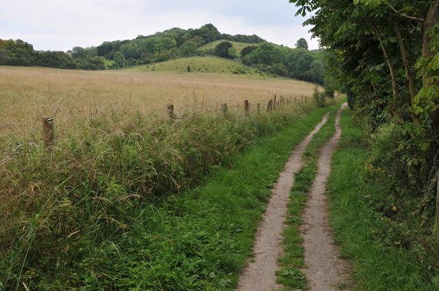 The Thames Path near Gatehampton
