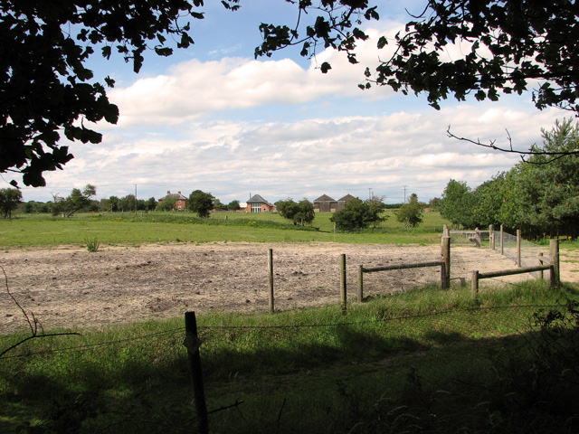 View towards Broom Hill from Minsmere Road