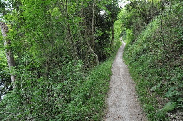 Thames Path, Hartslock Wood