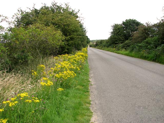 Dunwich Road past Westleton Heath Nature Reserve