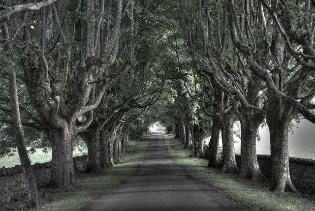 Inverbroom driveway