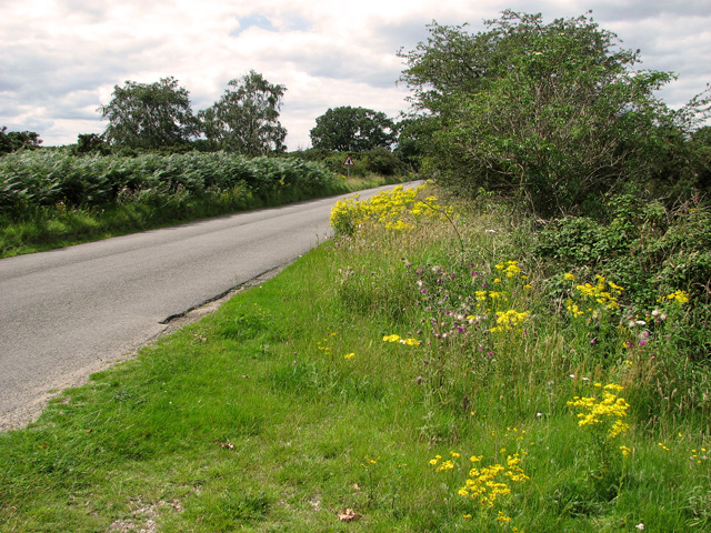 This way to Westleton on Dunwich Road