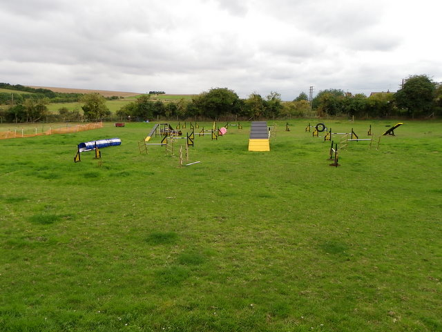 Dog agility course, Ogbourne St Andrew