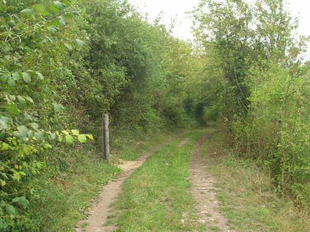 Farm Track off Apy Hill Lane