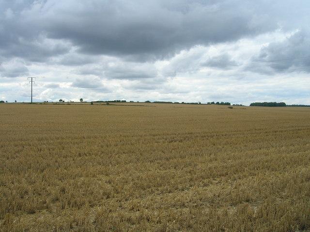 Farmland off Wilsic Lane