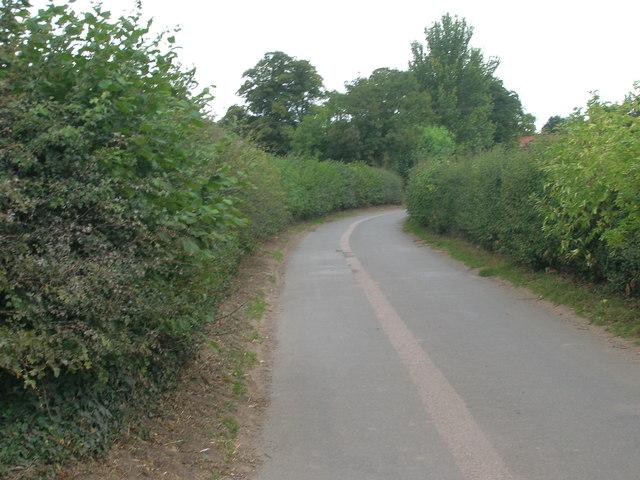 Wilsic Lane