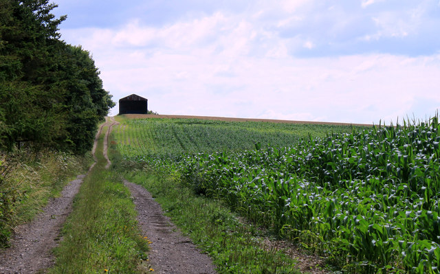 2011 : Byway and hay barn on Ansty Hill