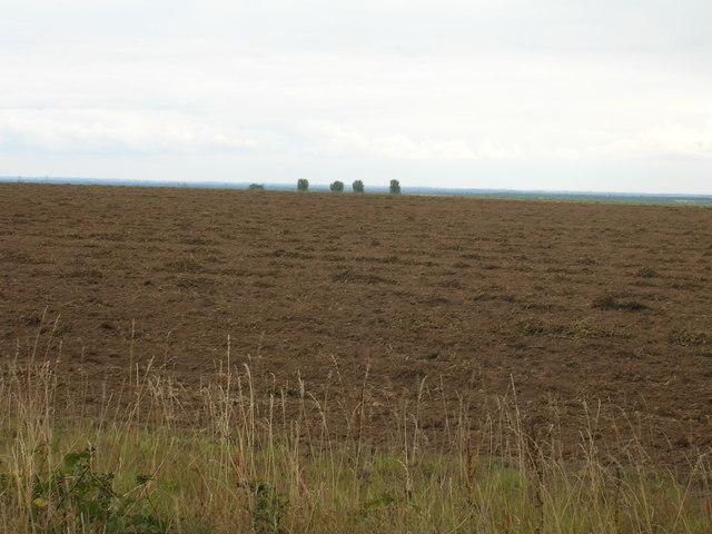 Farmland off Wilsic Road