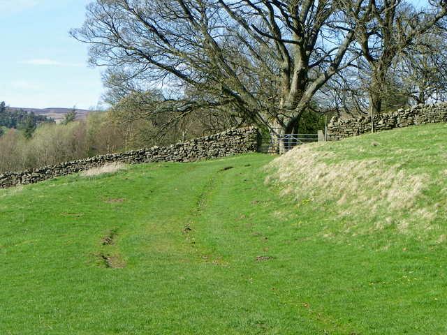 Nidderdale Way at Lofthouse