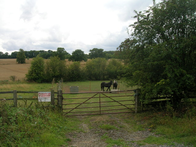 Field entrance off White Cross Lane