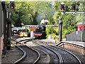 SE7984 : North Yorkshire Moors Railway by David Dixon