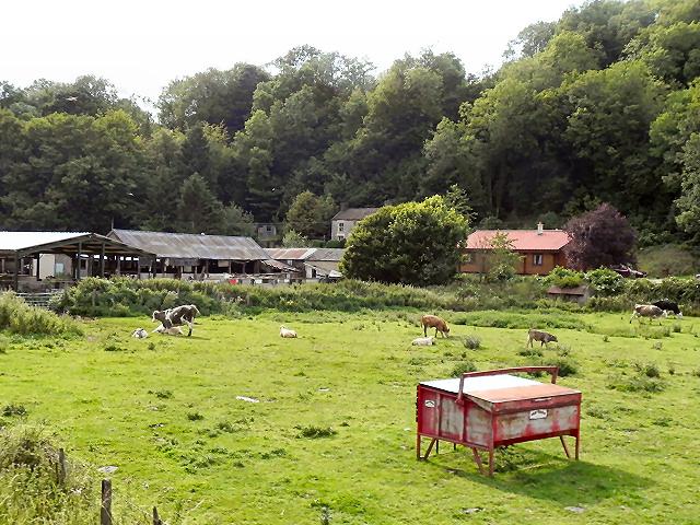 Woodland Poultry Farm, Newbridge