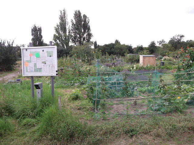 Sidcup Hill Allotments