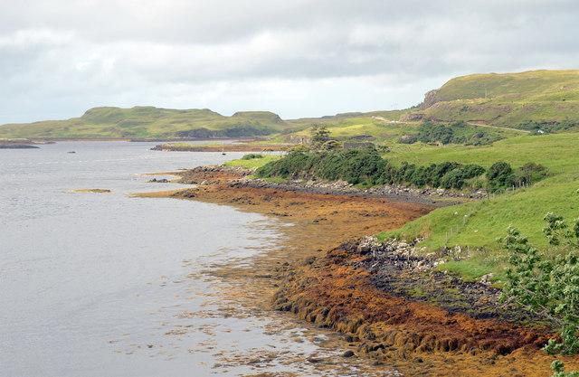 Bank of Loch Dunvegan