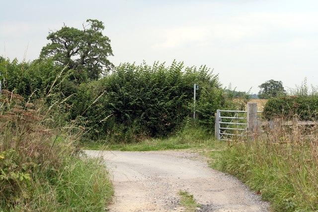Marsh Lane (Bishop Bennet Way)