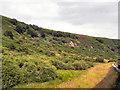 SE8497 : North Yorkshire Moors Railway, Fen Moor by David Dixon