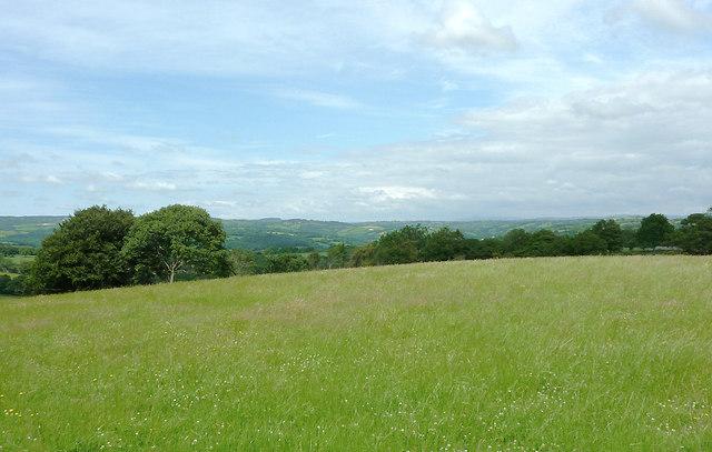 Grass field and landscape near to Llwyn-y-Groes