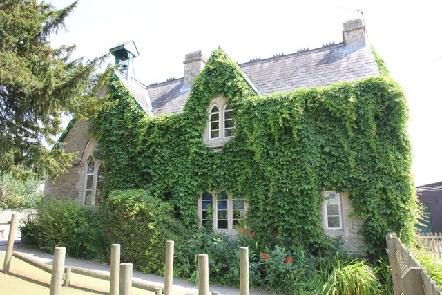 Ivy on the school