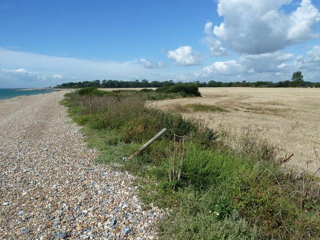 Along the coast from Atherington to Elmer (9)