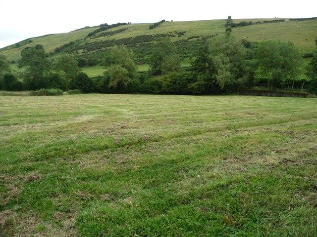 Mown field alongside the Redlake
