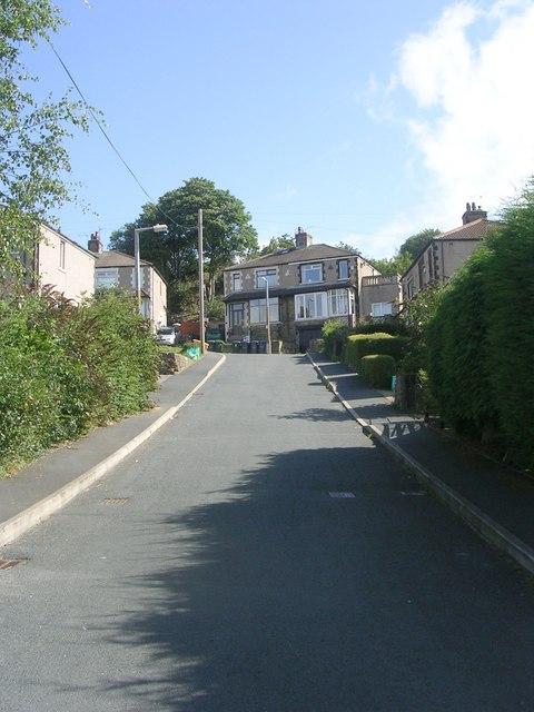 Mountain View - Gaisby Lane