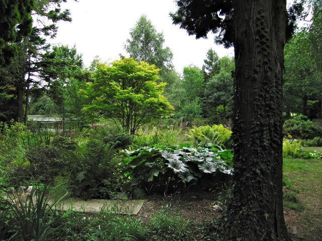 Gardens at Glansevern