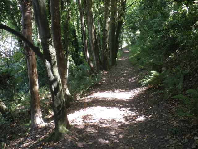 Coastal path, west of Minehead