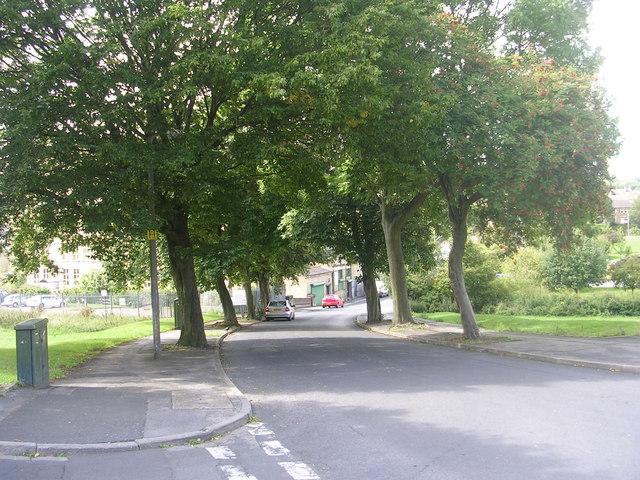 Poplar Road - viewed from Poplar Crescent