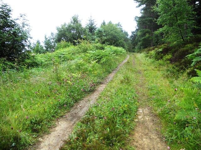 Jerry Noddle Trail