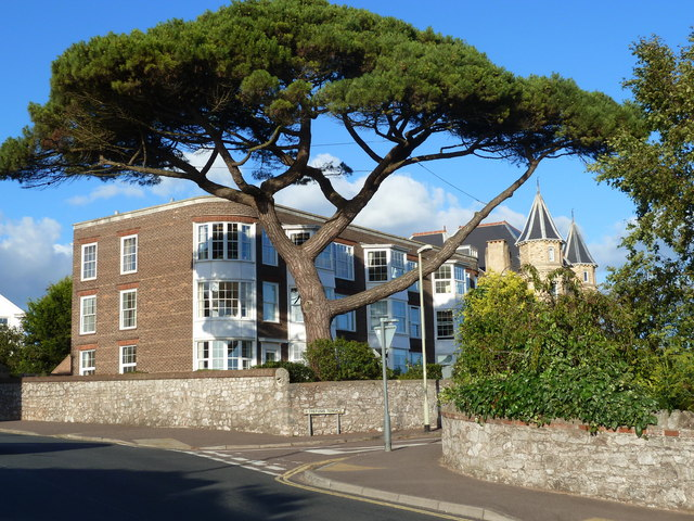 Apartments with magnificent tree, Exmouth