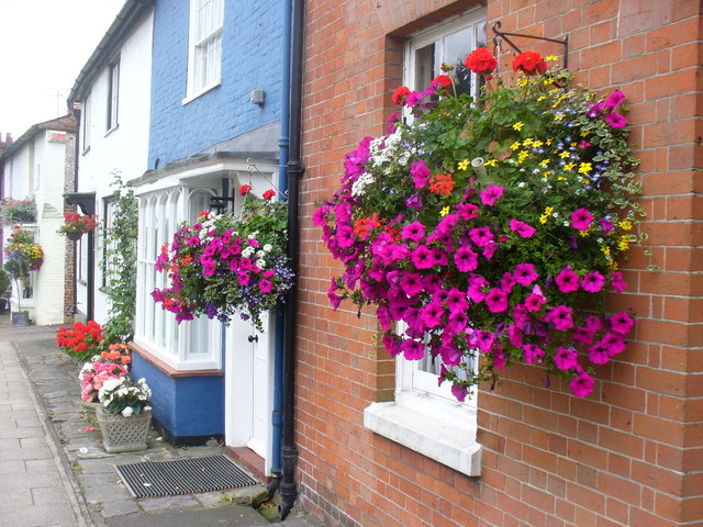 New Alresford in Bloom