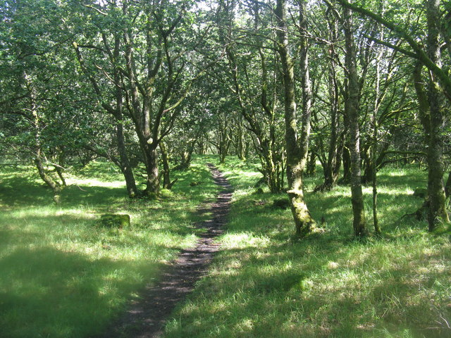 Path through the woods at the Pass of Leny