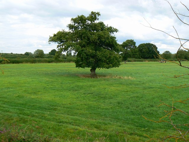 The northern end of the Swindon and Cricklade Railway, Hayes Knoll