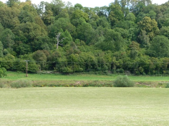Long Covert and the River Severn