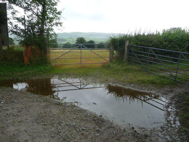 Puddle on the farm track