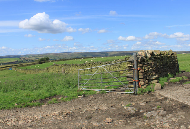 Summer afternoon on Wharmton Hill