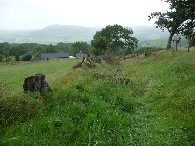 Old sunken way above Talwrn